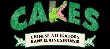 CAKES Alligators Logo